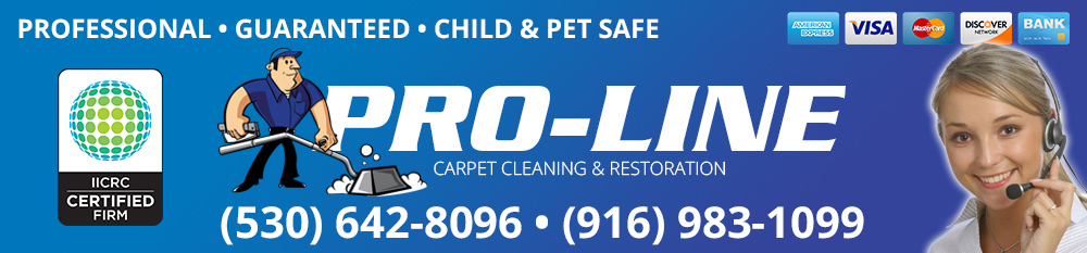 Pro-Line Carpet Cleaning Header image