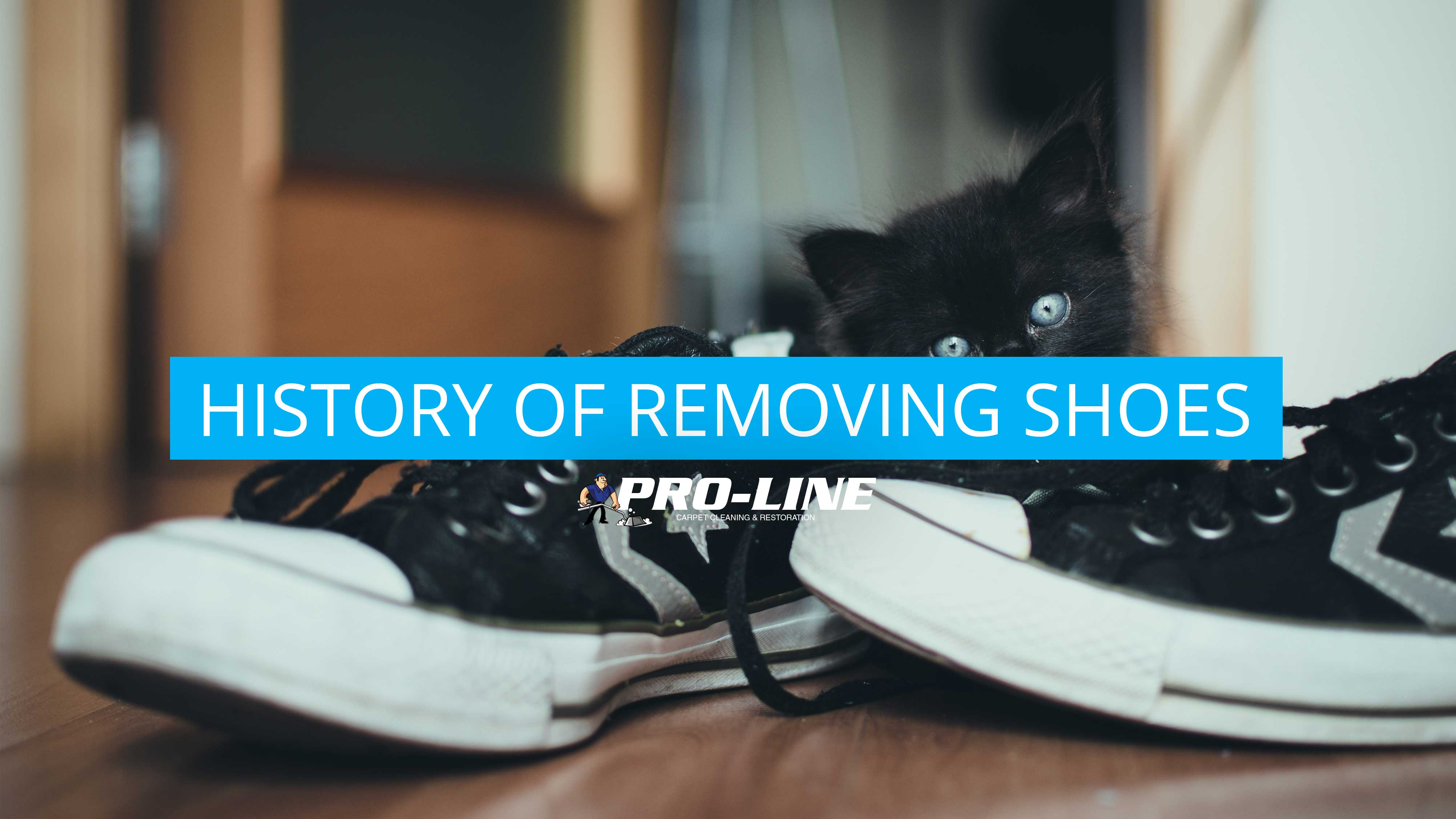 Removing Shoes Pro Line Cleaning Services Inc